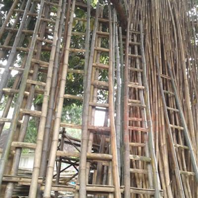 Tangga dari Bambu