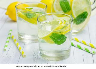 Limon Nane Salatalık Detoksu Ne İşe Yarar