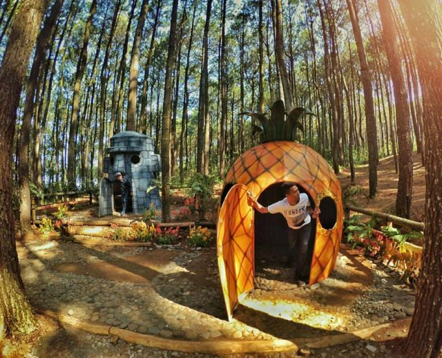 Lokasi Alamat Rumah Spongebob di Hutan Pinus Asri, Dlingo
