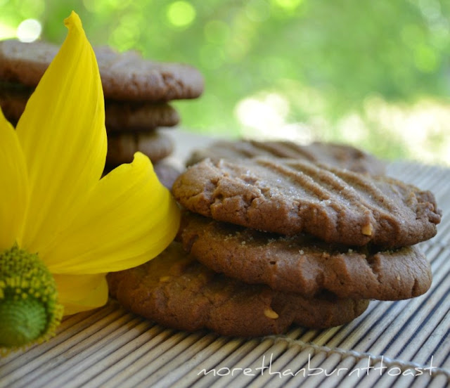 chocolate peanut butter cookies by Maida Heatter