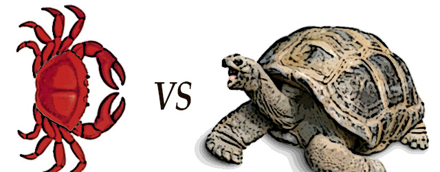 Tortoise and Crab African Folktale