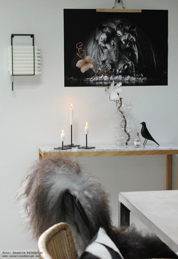 annelies design, ljusförvaring, ljus, väggen, flodhäst, fjäderblommor, poster, posters, ny design, varberg, ljusstakar, eldstickan