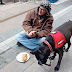 Homeless Professional Reunites With Beloved Solution Pet A Month After She Was Stolen