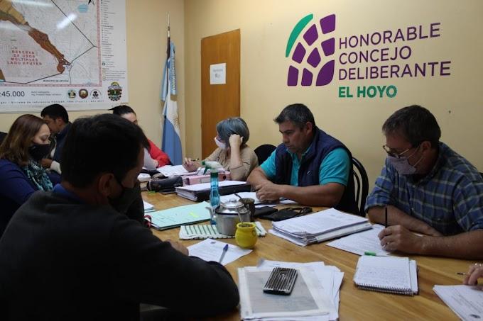 El Concejo Deliberante de El Hoyo declaró de Interés la actividad apícola