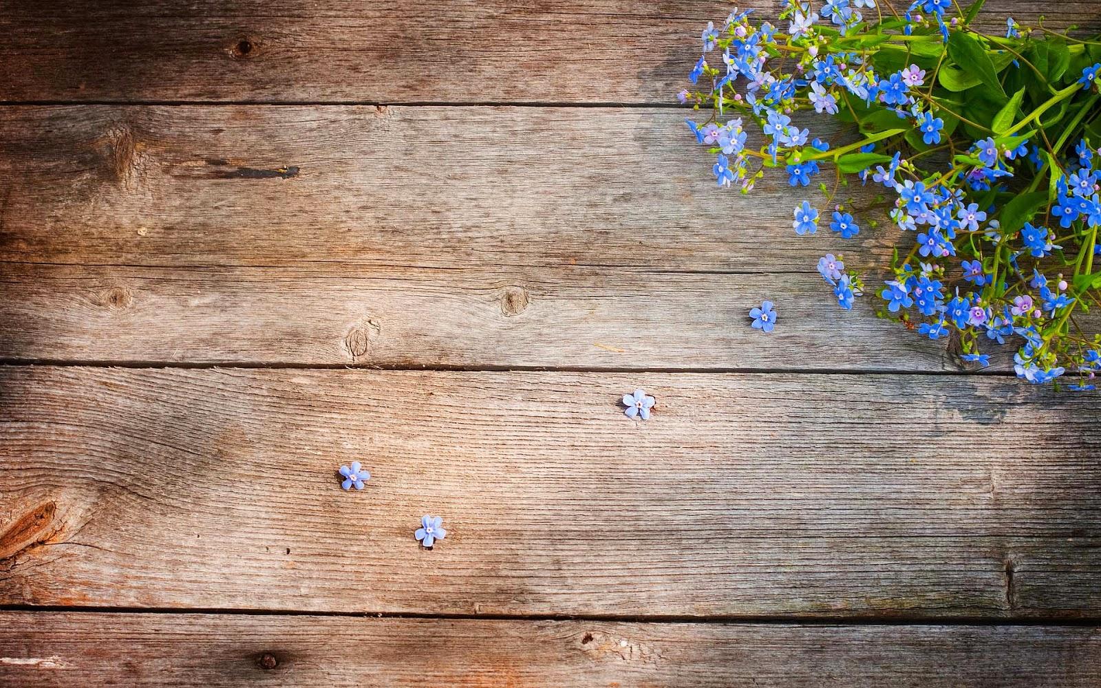 houten achtergronden hd - photo #36