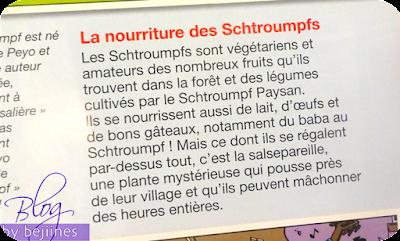 Livre Fleurus : Album Les Schtroumpfs