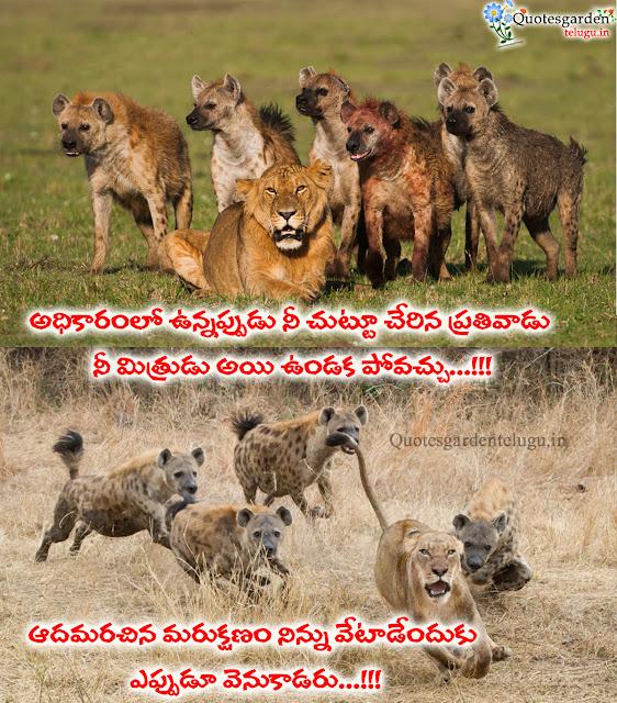Nammakadroham Quotes in Telugu