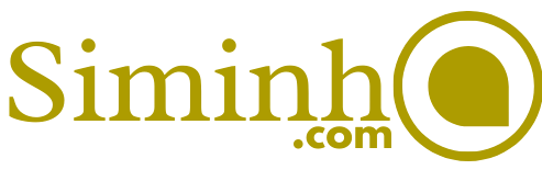 Siminho Accounting Consultant