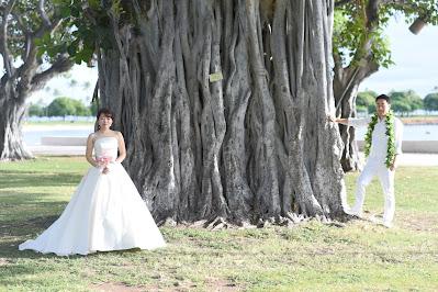 Wedding Oahu