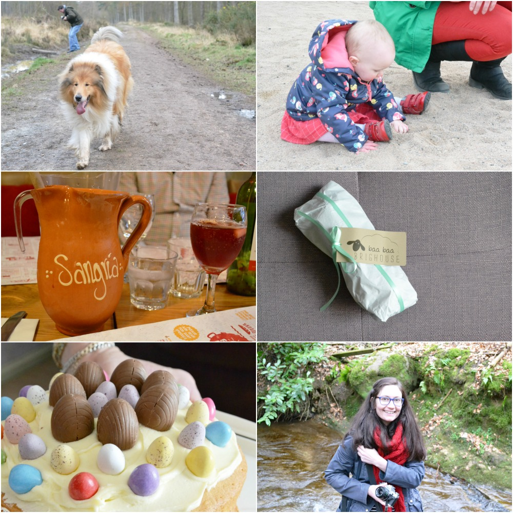 what I did in march spring blog cake easter sangria outdoors dog rough collie yarn baa baa brighouse