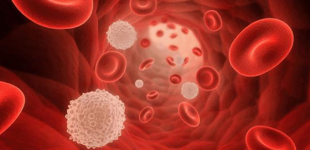 cómo bajar los triglicéridos y el colesterol