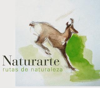 http://naturartepirineos.blogspot.com.es/