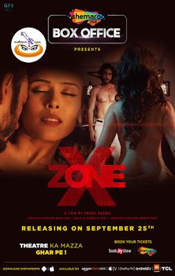X Zone 2020 Hindi 480p SM WEB HDRip 300Mb x264