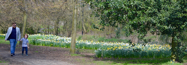 Exhibition Park Newcastle | Wylam Brewery Sunday Lunch - daffodils in the park