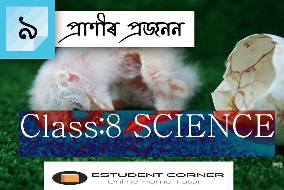 Class 8 || SCIENCE || Lesson 9 || প্ৰাণীৰ প্ৰজনন || Textbook Questions Solved Fully in Assamese