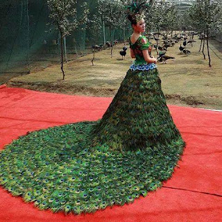 Girl Wearing Peacock Dress