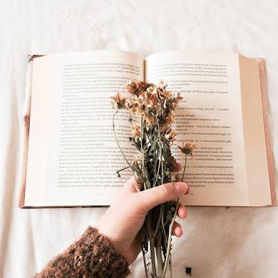 livros-lidos-fevereiro