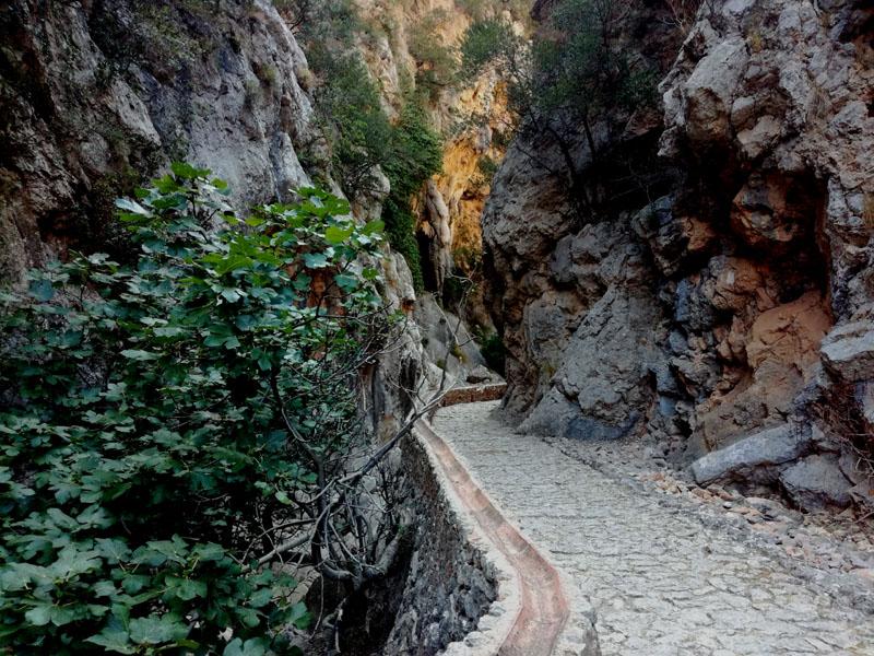 Foto: La Ruta de Petra en Sec - Mallorca