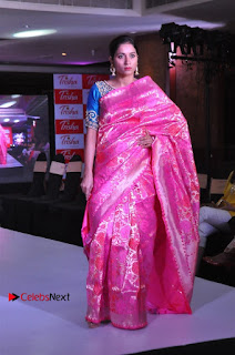 South Indian Celebrities Pos at Love For Handloom Collection Fashion Show  0115.jpg
