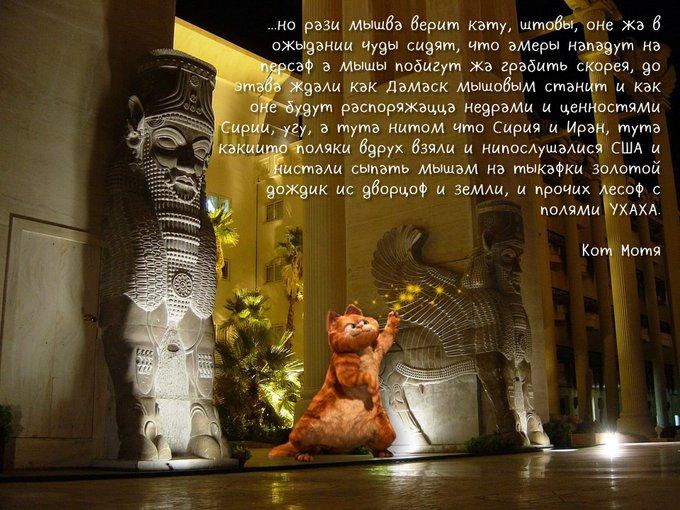 Блог Кота Моти  - Страница 4 E-SpFmlXoAAvbiW