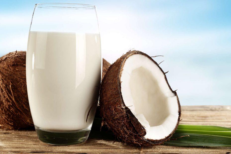 Leite de coco: 8 razões para começar a consumir esse leite não lácteo