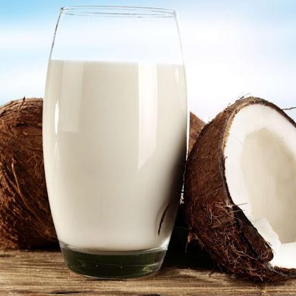 Leite de coco: 8 razões para começar a consumir esse leite