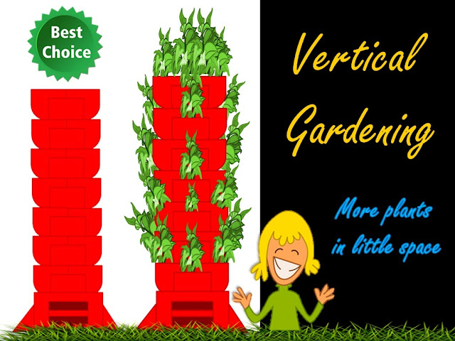 vertical gardening : grow more plants in less space