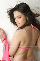 Riya Sen Exclusive Bikini Pics ~  Exclusive 001.jpg