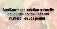 AppiCure : une solution naturelle pour lutter contre l'ennemi numéro 1 de vos poules !
