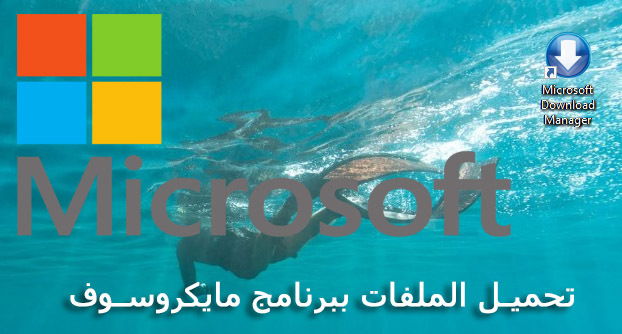 تحميل Microsoft Download Manager