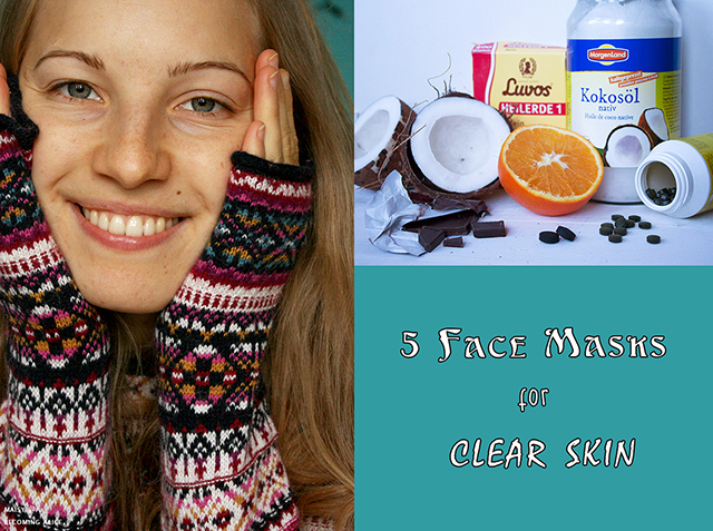 http://be-alice.blogspot.com/2017/01/5-diy-natural-face-masks.html