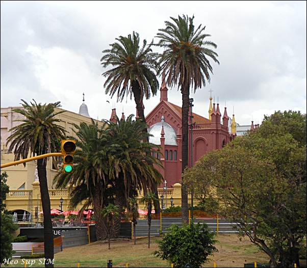 CRUISE AROUND THE WORLD: 24Jan Buenos Aires From HOHO Bus