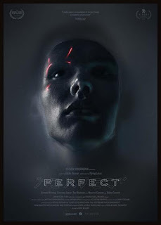 Download Perfect (2018) Full Movie HDRip 720p