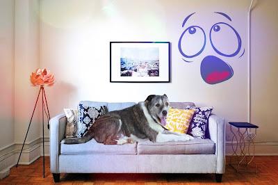perros imagenes, imágenes de perros, fotos de perritos, imagenes d perros, fotos de perros