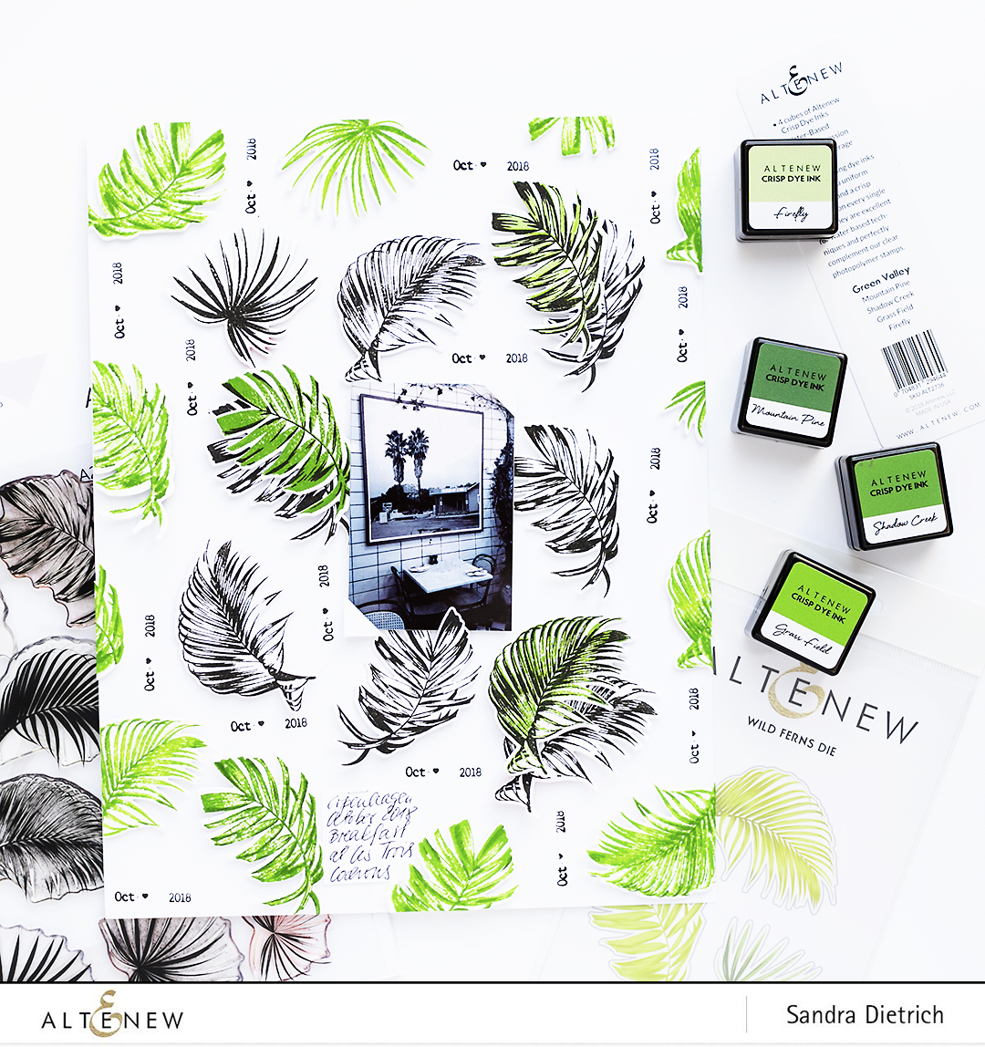 Altenew Stamp Focus Wild Ferns Layout Sneak