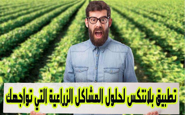 تطبيق بلانتكس لحلول المشاكل الزراعية التي تواجهك