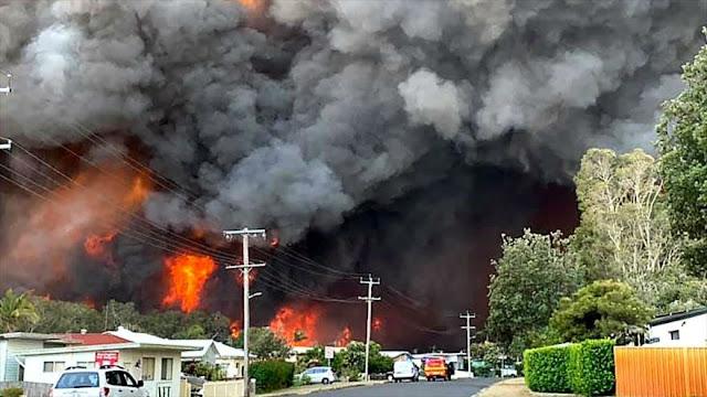 Incendios forestales arrasan 575 000 hectáreas en Australia