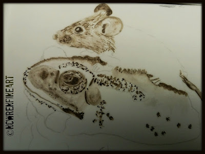 liquid pencil grissaille ncwren