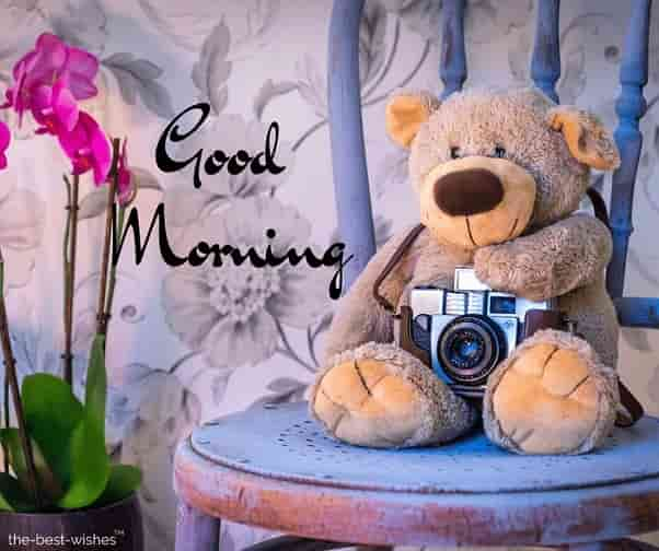 good morning teddy bear images