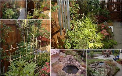 Japanese style garden created in 2008