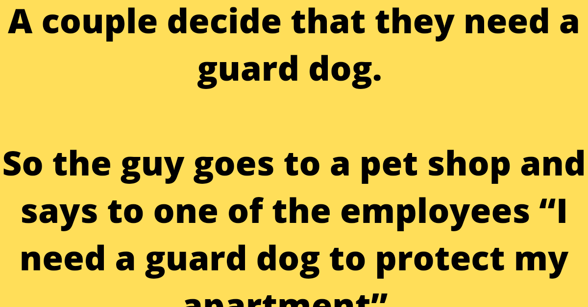 """A couple decide that they need a guard dog.     So the guy goes to a pet shop and says to one of the employees """"I need a guard dog to protect my apartment""""."""