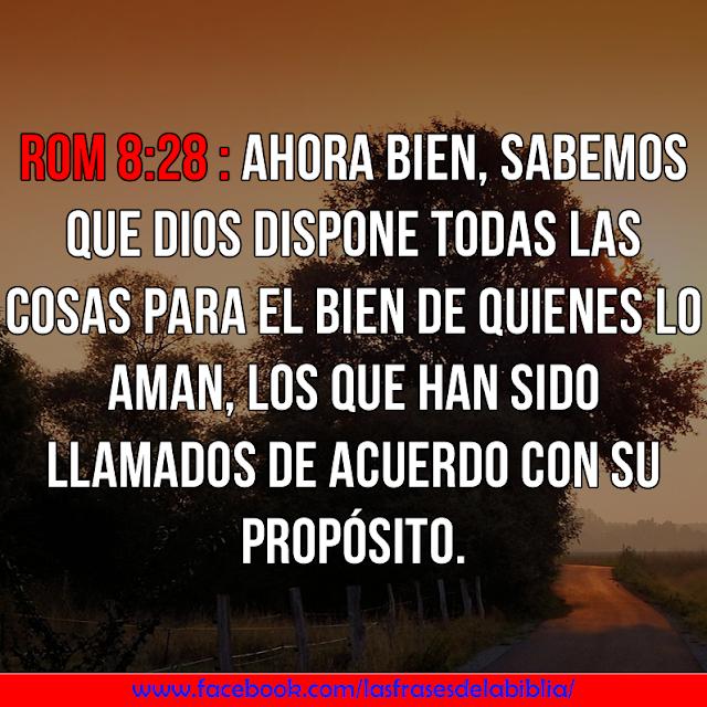 romanos 8 28