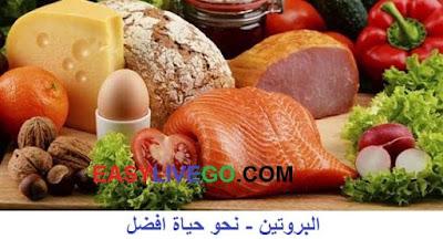افضل مصادر البروتين النباتي والحيواني - دليل شامل
