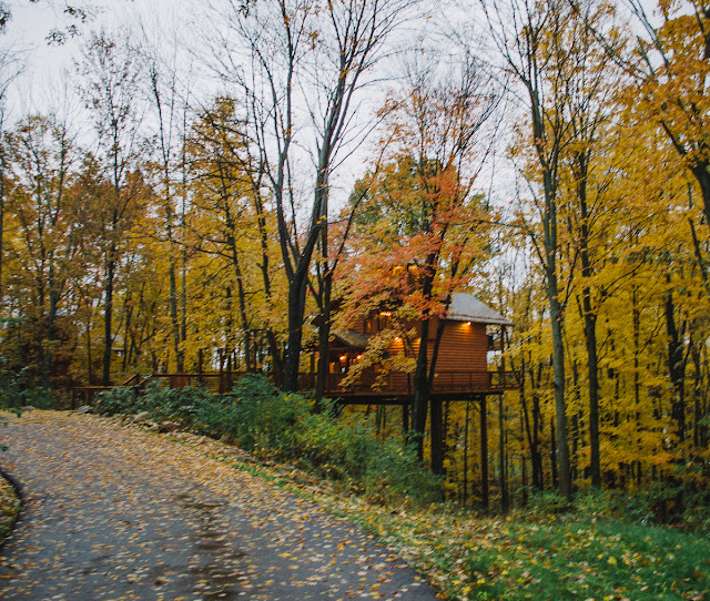 Berlin Woods Treehouses Review
