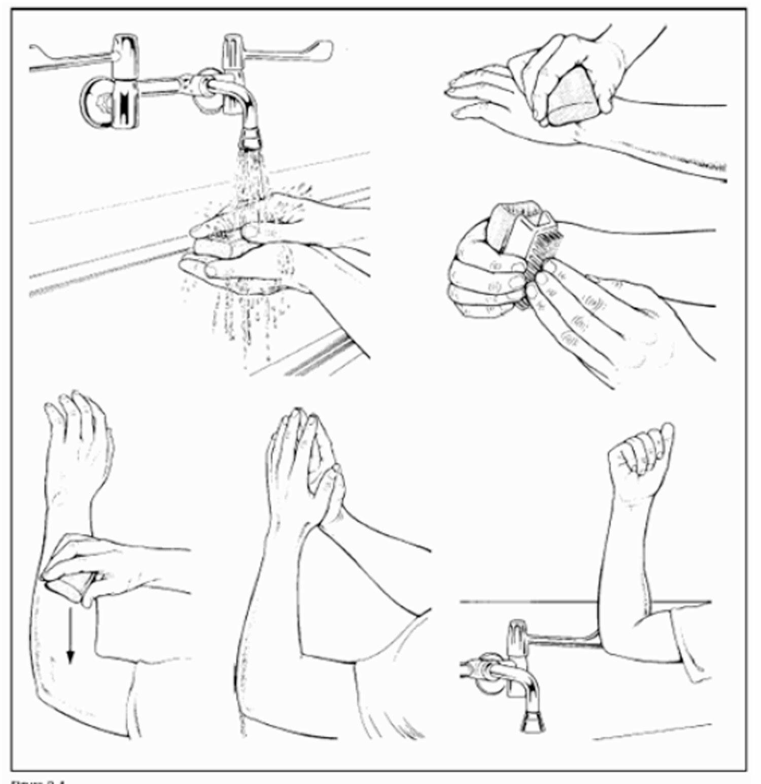 Hand Hygiene and Handwashing