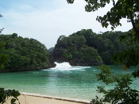 Pulau Sempu wisata malang jawa timur yang memukau