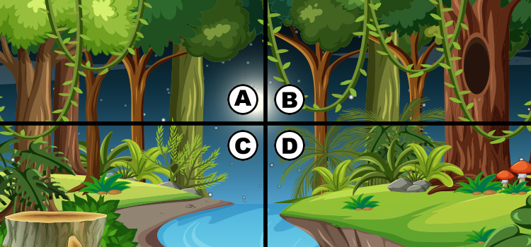 Spot the 4 Leaf Clover Quiz Answers || Bequizzed