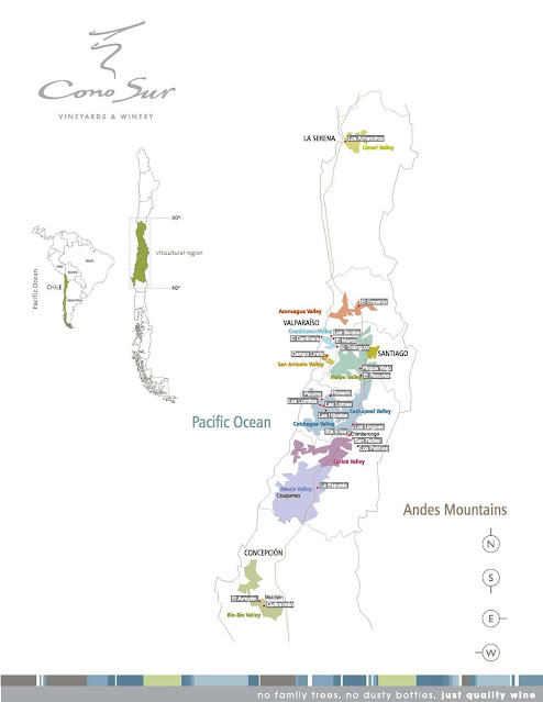 Cono Sur vineyards and winery