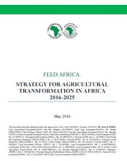 The AfDB strategy for Africa's agricultural transformation