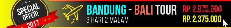 Bali Tour Promo